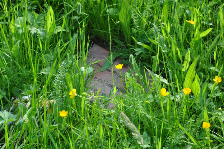 Green Burial 4 Tracing Green July 2015
