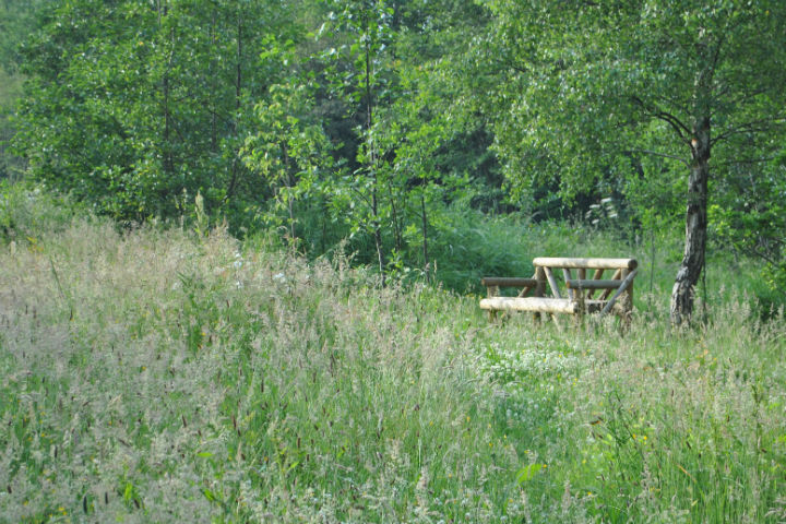 Green Burial 8 Tracing Green July 2015
